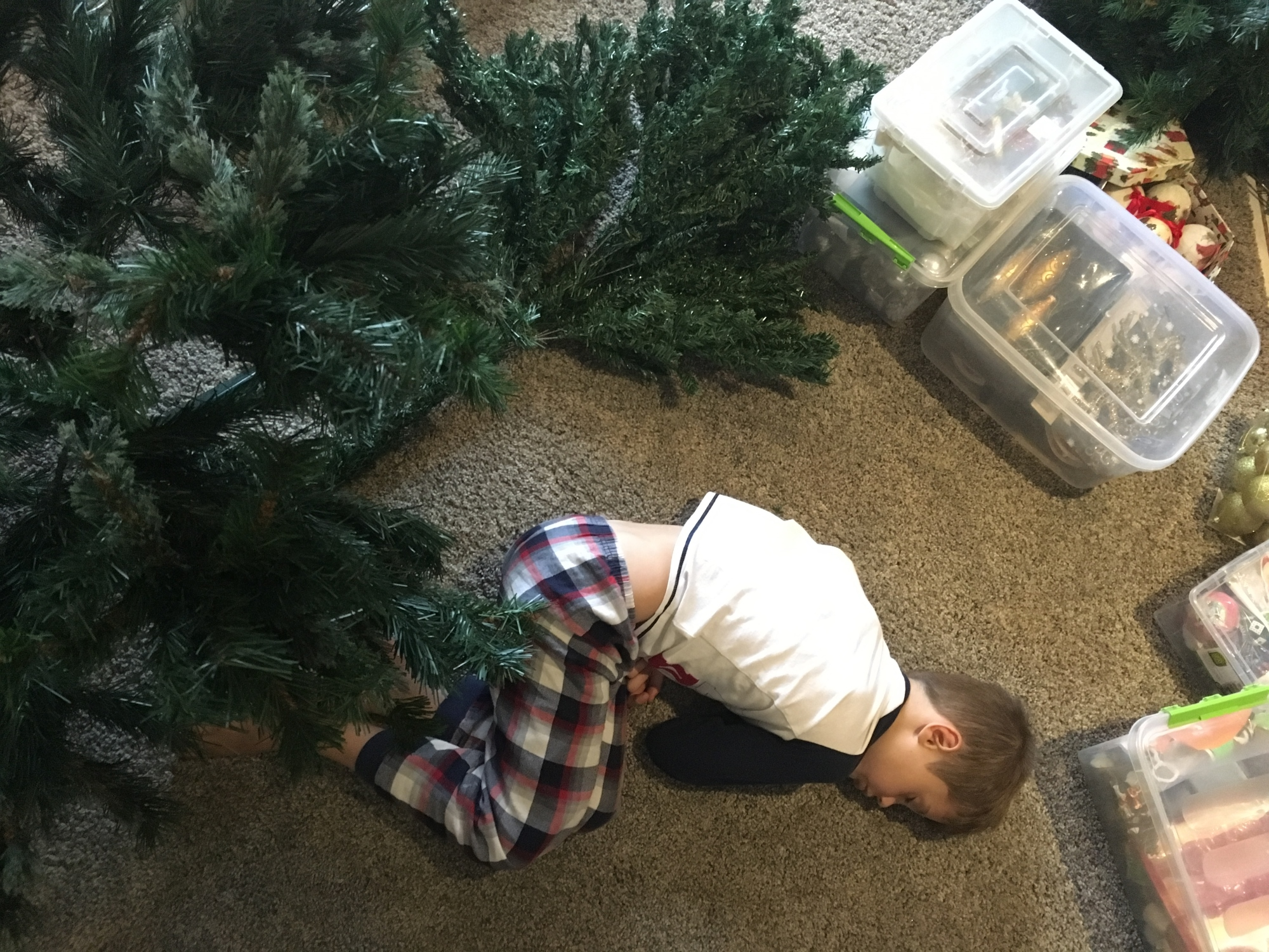 christmastreeblog_Aiden-sleeping